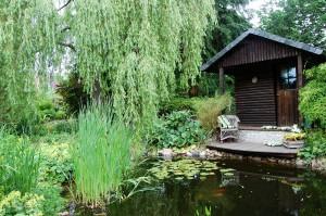 Hütte mit Teich
