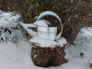 Wir giessen mit Schnee