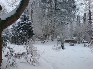 Schnee deckt den Garten zu