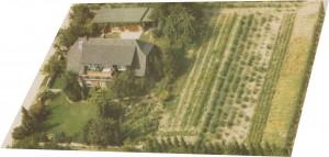 Luftbild 1986