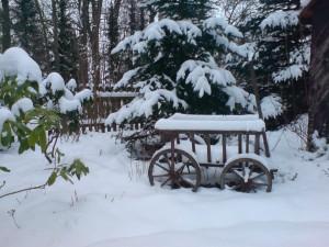Schneekarre